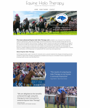 New Website Launch for Equine Halo Salt Therapy